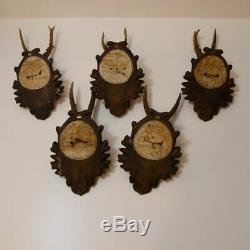 5 Piece Original Old Antique Deer Antlers On Pressed Signs Decoration
