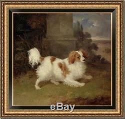 Hand-painted Old Master-Art Antique Oil Painting Portrait dog on canvas 30X30