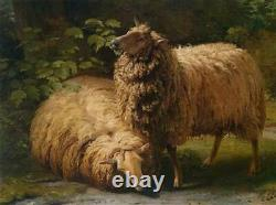 Hand-painted Old Master-Art Antique Oil Painting animal sheep on canvas 30X40