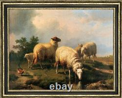 Old Master-Art Antique Oil Painting Portrait animal sheep on canvas 30x40