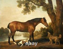 Old Master-Art Antique Oil Painting animal Portrait horse dog on canvas 30x40