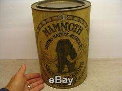 RARE Antique 10 lb. Dixie Mammoth NUTS PEANUTS TIN advertising container OLD lid