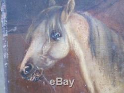 SMALL ANTIQUE OLD ORIGINAL OIL PAINTING of a HORSE NAIVE STYLE FOLK ART signed